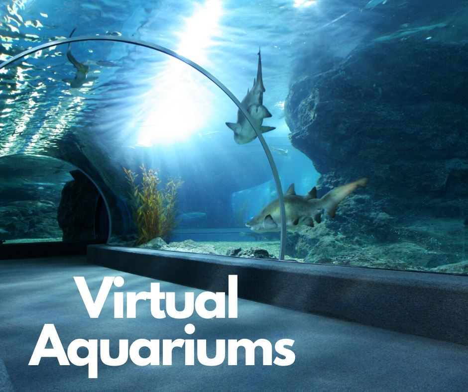 virtual aquariums
